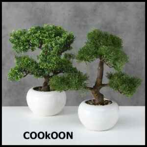 deco BONSAI indoor h33cm
